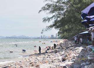 thai- cha'am pantai